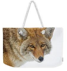 Mr. Coyote Weekender Tote Bag