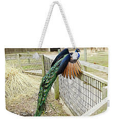 Weekender Tote Bag featuring the photograph Mr. Flying Peacock by Melissa Messick