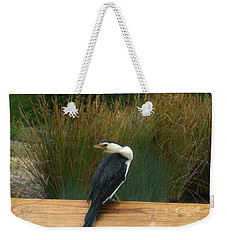Weekender Tote Bag featuring the photograph Mr Frederick Higgins Looks Around by Mark Blauhoefer