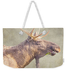 Weekender Tote Bag featuring the photograph Mr Moose by Roy McPeak