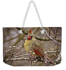 Weekender Tote Bag featuring the photograph Mrs Cardinal by Douglas Stucky
