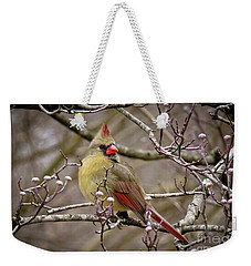 Weekender Tote Bag featuring the photograph Mrs Cardinal II by Douglas Stucky