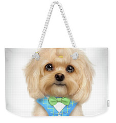 Weekender Tote Bag featuring the painting Mr.toby Waffles by Catia Lee