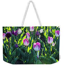 Msu Spring 3 Weekender Tote Bag by John McGraw