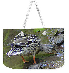 Weekender Tote Bag featuring the photograph Muddy Mallard by Kathy Kelly
