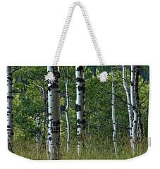 Weekender Tote Bag featuring the photograph Mug - Aspen Trees by Inge Riis McDonald