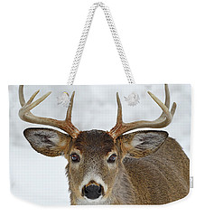 Weekender Tote Bag featuring the photograph Mug Shot by Tony Beck