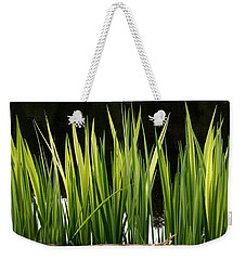 Weekender Tote Bag featuring the photograph Mug - Spring Reeds by Inge Riis McDonald