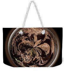Weekender Tote Bag featuring the photograph Muir Woods Orb by Judy Wolinsky