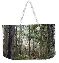 Weekender Tote Bag featuring the photograph Muir Woods Tranquility by Sandra Bronstein