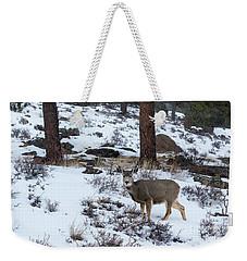 Mule Deer - 8922 Weekender Tote Bag