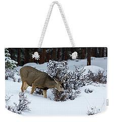 Mule Deer - 9130 Weekender Tote Bag