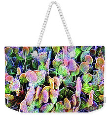 Weekender Tote Bag featuring the digital art Multi-color Artistic Beaver Tail Cactus by Linda Phelps
