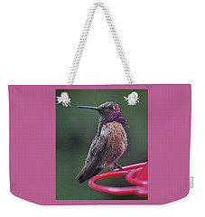 Multicolored Male Anna's Hummingbird Weekender Tote Bag