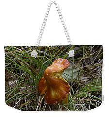 Weekender Tote Bag featuring the photograph Mushroom In Grass by Paul Freidlund