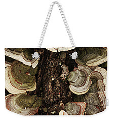 Weekender Tote Bag featuring the photograph Mushroom Shells By The Lake Shore by Kim Henderson