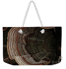 Weekender Tote Bag featuring the photograph Mushroom Shells by Kim Henderson