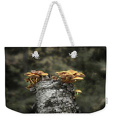 Mushrooms Atop Birch Weekender Tote Bag