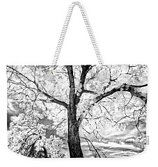 Weekender Tote Bag featuring the photograph Music Moves The Soul by Dan Jurak