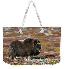 Muskox Weekender Tote Bag