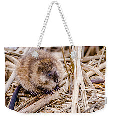 Weekender Tote Bag featuring the photograph Muskrat Ball by Steven Santamour