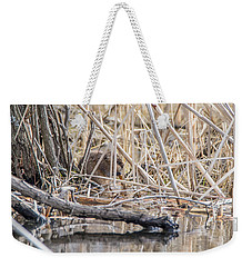 Weekender Tote Bag featuring the photograph Muskrat Eating A Fish by Steven Santamour