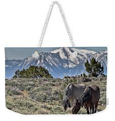 Mustangs In The Sierra Nevada Mountains Weekender Tote Bag