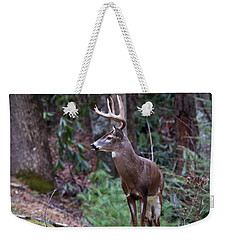 Weekender Tote Bag featuring the photograph My Best Side by Douglas Stucky