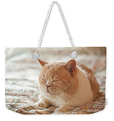 My Cute Hairball Weekender Tote Bag