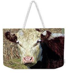 My Favorite Cow Weekender Tote Bag by Tina M Wenger