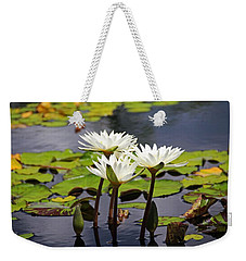 Weekender Tote Bag featuring the photograph My Sweetest Madness by Michiale Schneider