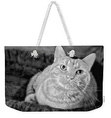 Weekender Tote Bag featuring the photograph My True Love Revisited by Luther Fine Art