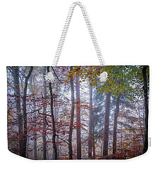 Weekender Tote Bag featuring the photograph Mystery In Fog by Elena Elisseeva