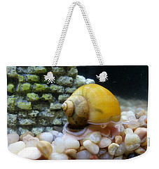 Weekender Tote Bag featuring the photograph Mystery Snail by Robert Knight