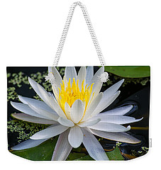Mystical Lotus Weekender Tote Bag by Kenneth Albin