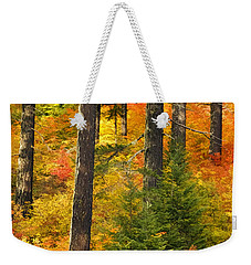 N W Autumn Weekender Tote Bag by Wes and Dotty Weber