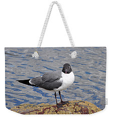 Weekender Tote Bag featuring the photograph Bird by Glenn Gordon