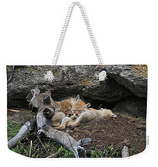 Weekender Tote Bag featuring the photograph Nap Time by Steve Stuller