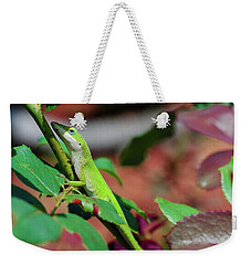 Native Anole Weekender Tote Bag