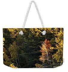 natural Framing Weekender Tote Bag by Aimelle