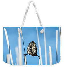Weekender Tote Bag featuring the photograph Nature's Circus by Steven Santamour