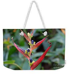 Nature's Creation Weekender Tote Bag