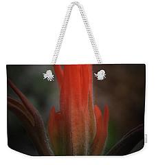 Nature's Fire Weekender Tote Bag