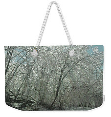 Weekender Tote Bag featuring the photograph Nature's Frosting by Ellen Levinson