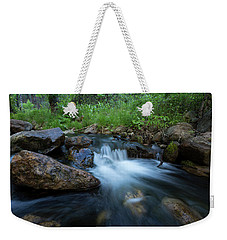 Nature's Harmony Weekender Tote Bag by Sue Cullumber