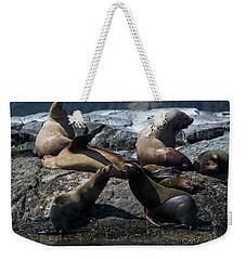 Weekender Tote Bag featuring the photograph Nature's Music - Wildlife Art by Jordan Blackstone