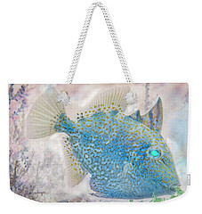Weekender Tote Bag featuring the photograph Nautical Beach And Fish #2 by Debra and Dave Vanderlaan
