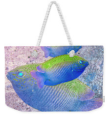 Weekender Tote Bag featuring the photograph Nautical Beach And Fish #3 by Debra and Dave Vanderlaan