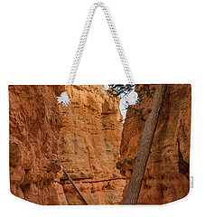 Navajo Trail Tree Weekender Tote Bag
