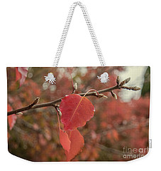 Weekender Tote Bag featuring the photograph Nearing The End by Elaine Teague